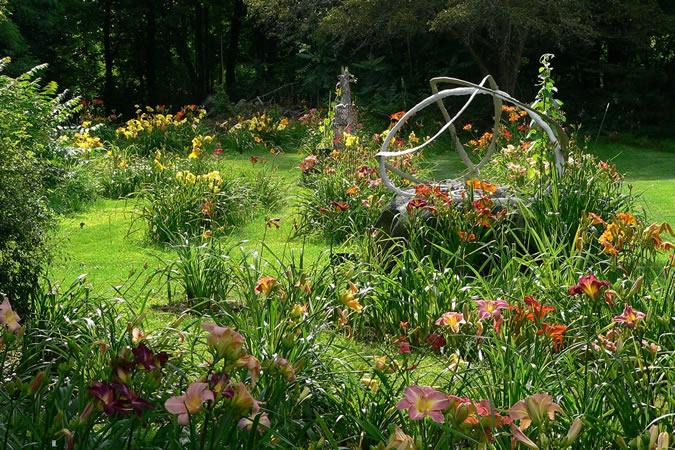 Hardy Daylily Garden Upper Garden